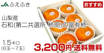 富有柿1.5