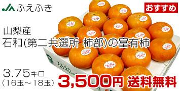 富有柿3.75