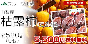 枯露柿580