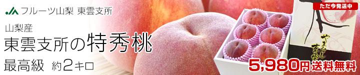 東雲支所の特秀桃